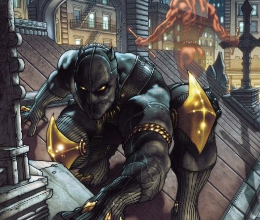 black panther tchalla (28)