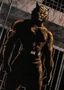 bronze-tiger8