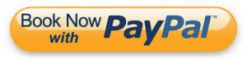 Orange paypal button