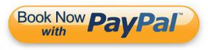 Orange paypal button