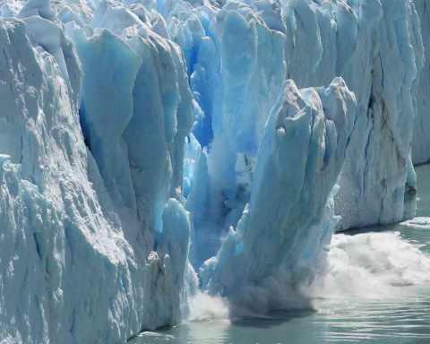 Klimawandel - und ich? (Foto: Bernhard Staehli/ shutterstock)