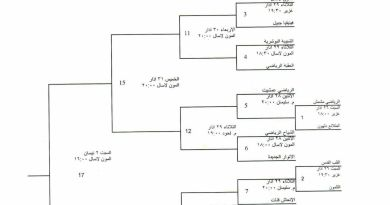 The Sad Truth About Our Lebanese Volleyball Cup
