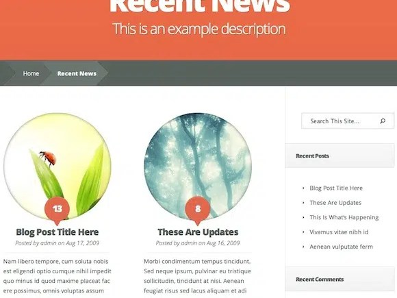wordpress-nimble-elegant-theme_2
