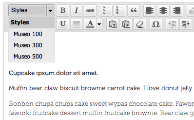 Adding web font to TinyMCE, the WordPress editor
