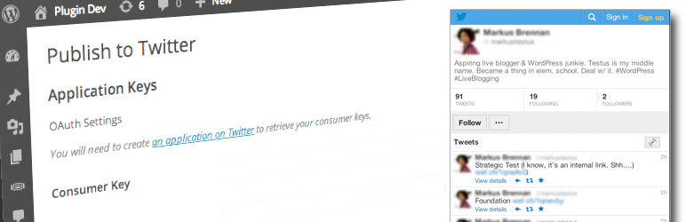 WordPress Publish to Twitter Plugin Lets You Tweet by Category
