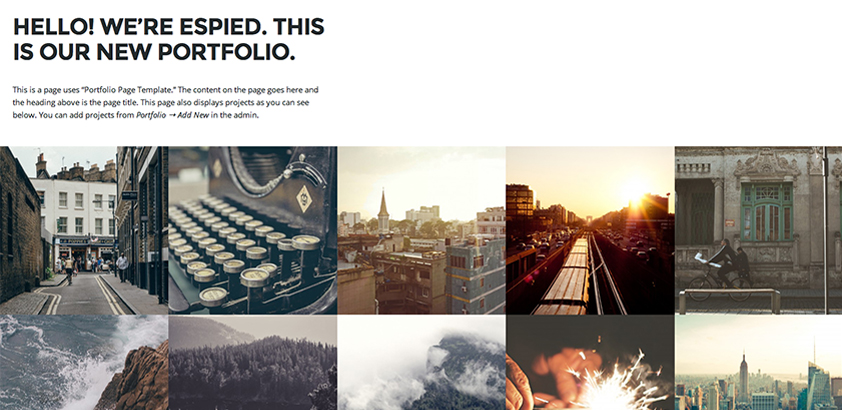 Espied: A Free WordPress Portfolio Theme for Designers and Photographers