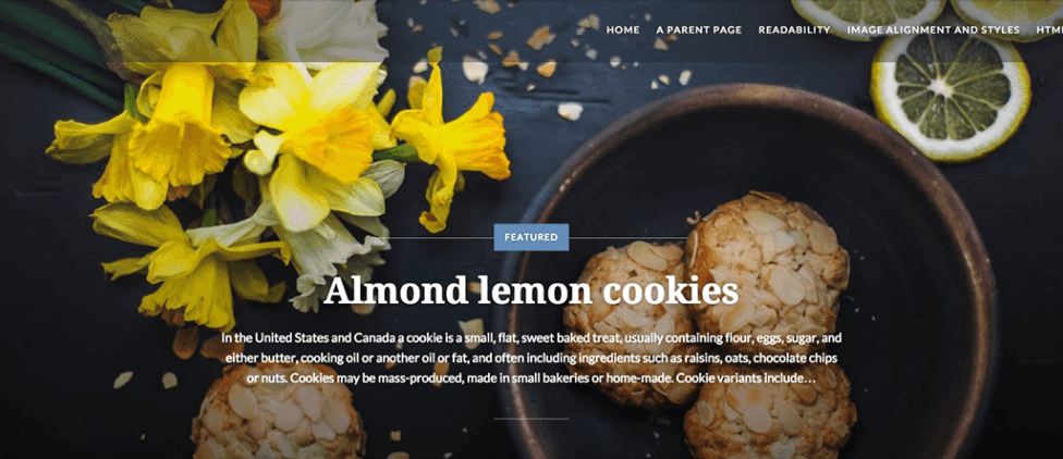 Dyad: A Beautiful Free WordPress Theme for Photographers and Foodies