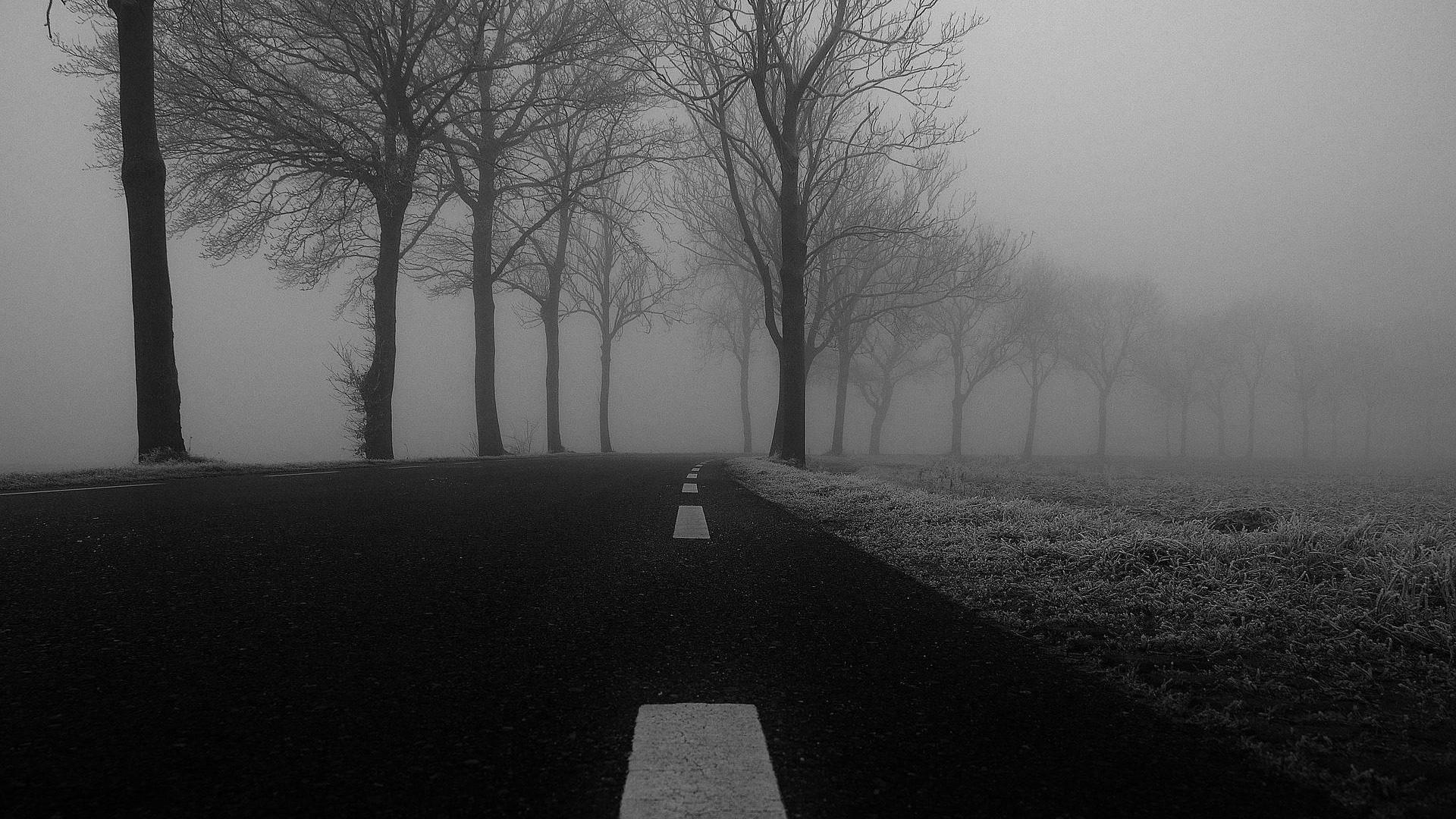Path of Exile Polska