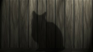 cat-shadow