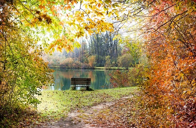 Two Weeks Until We Find Fall Foliage!