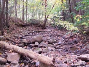creek_op