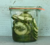 quick refrigerator pickles | writes4food.com