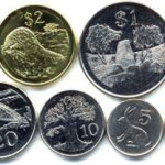 Zim Coins Signal Return To Dollar?