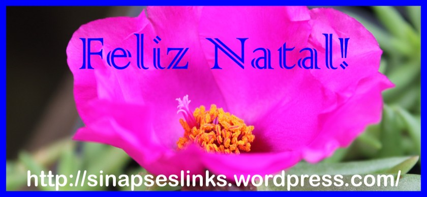 20121217_SinapsesLinks_Natal