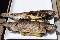 Fabulous Whole Grilled Rainbow Trout Stuffed Grilled Whole Trout Recipes Grilled Trout Recipes Foil Serve Grilled Rainbow Trout Right Off On Grill