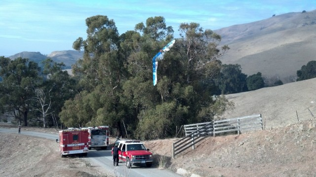 A glider hangs in a tree in Ed Levin County Park in Milpitas. Local firefighters called on the California Highway Patrol to rescue the pilot from trees that couldn't be reached by aerial ladders (Photo: California Highway Patrol)