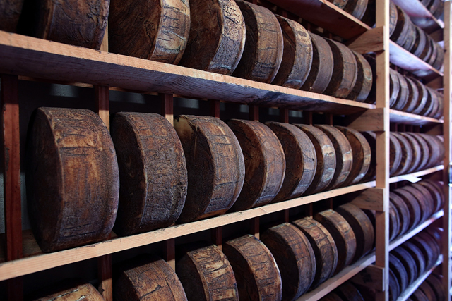 Wheels of jack cheese age on wooden racks in a cooler at Vella Cheese in Sonoma, California. (Justin Sullivan/Getty Images)