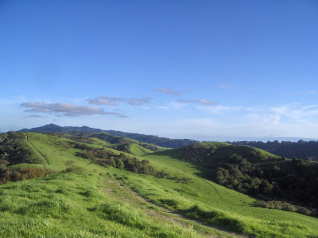 Like many of the hikes on our list, Tilden Park also offers some stellar views. (Jenn Clark/Flickr)
