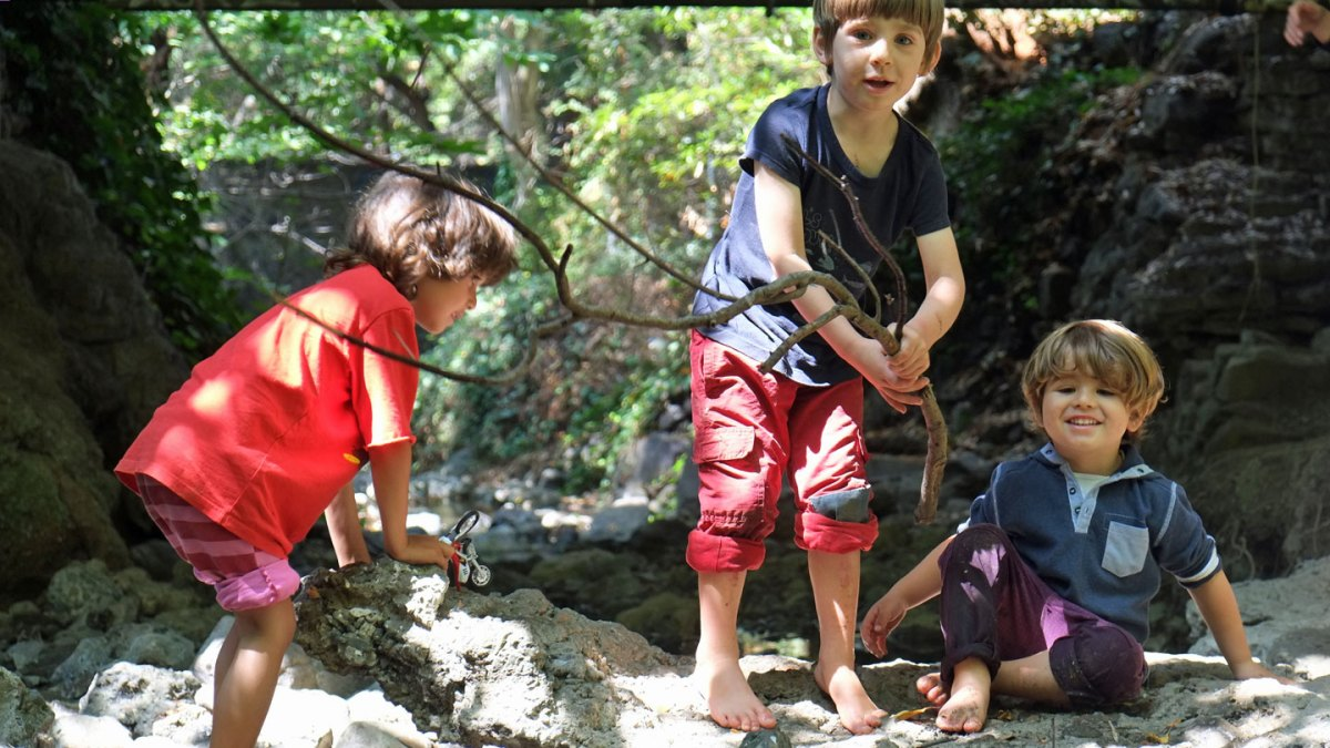 Forest Kindergartens Push Back Against Academic Focus For Young Kids