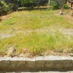 San Francisco Asks Residents to Identify City's 'Ugliest' Yard