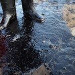 Santa Barbara Oil Spill:  Investigation Underway as Cleanup Continues