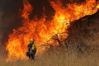 A firefighter from the Sonoma County town of Windsor walks next to a wall of flames as he starts a back fire in tall dry grass while battling the Rocky Fire on Thursday. By Monday, the blaze had consumed 60,000 acres and was 12 percent contained.