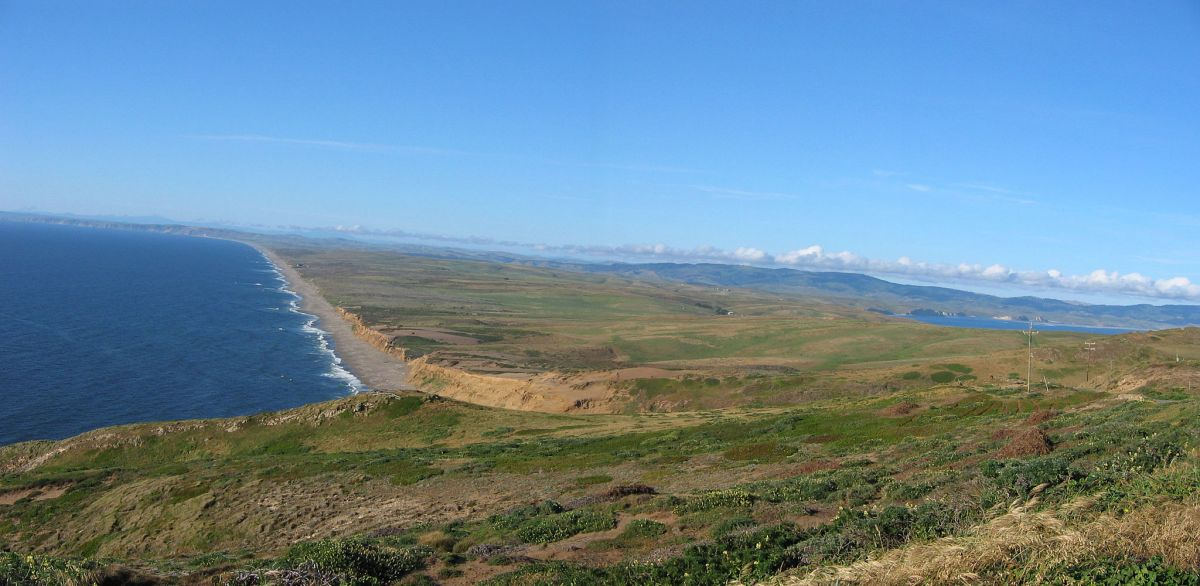 Lawsuit Challenges Cattle Ranches at Point Reyes National Seashore