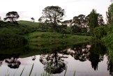 Still water, a view of Hobbiton Movie Set