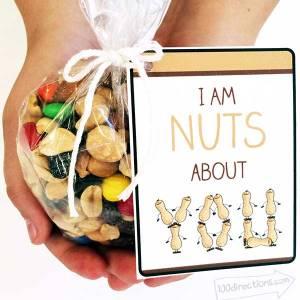 I'm Nuts About You - Teacher Appreciation Gift Idea