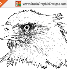 053-free-hand-drawn-eagle-vector-graphics-l