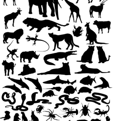 326-animals-silhouettes-collection-vector-pack