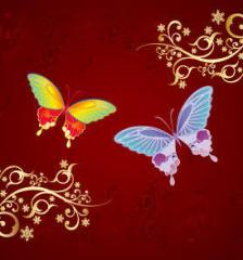 009_ornament_butterfly-ornaments-free-vector