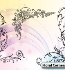hand-drawn-floral-corner-vector-illustration-photoshop-brushes-s17