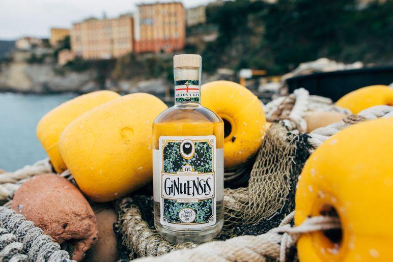 gin-29
