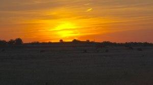 Texas-Sunset