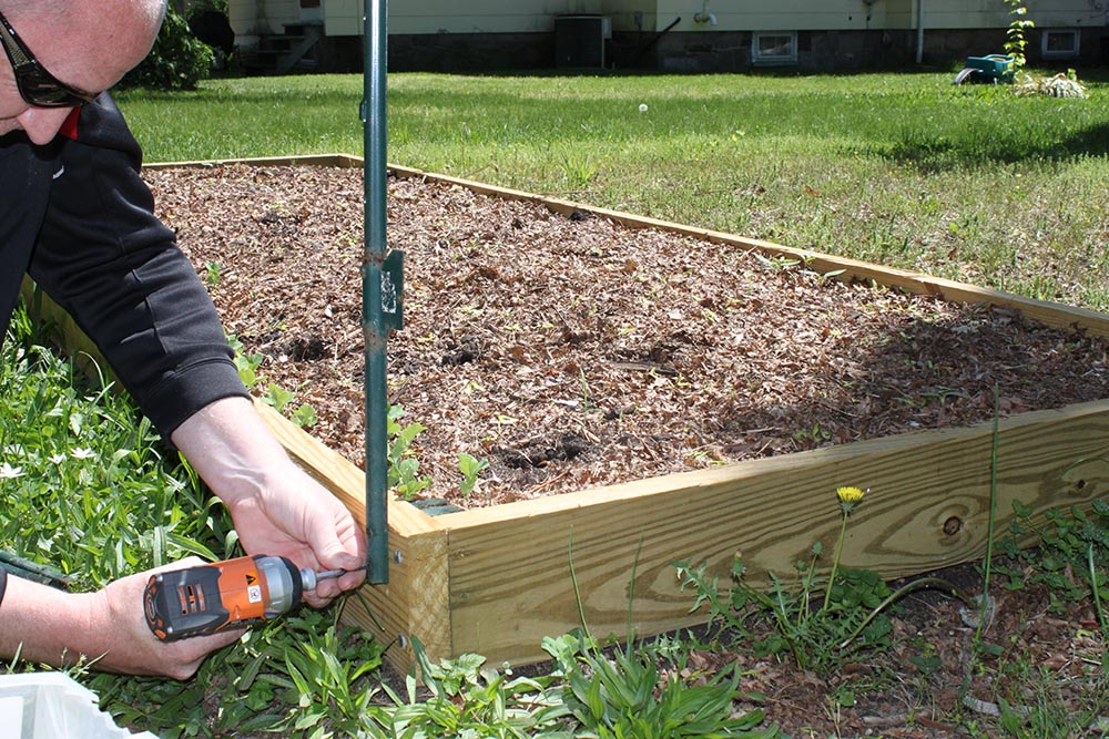 Raised Corner Vege Garden Against Fence : ... _out-of_your_garden_protect_vegetable_garden_build_a_simple_fence02