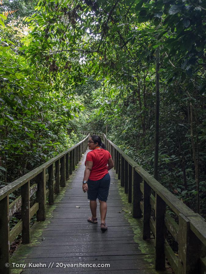 Nature walk at Sepilok Orangutan Rehabilitation Center