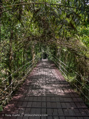 Suspension bridge to Mulu headquarters