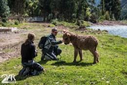 Josh und Claudia mit Bob dem Esel