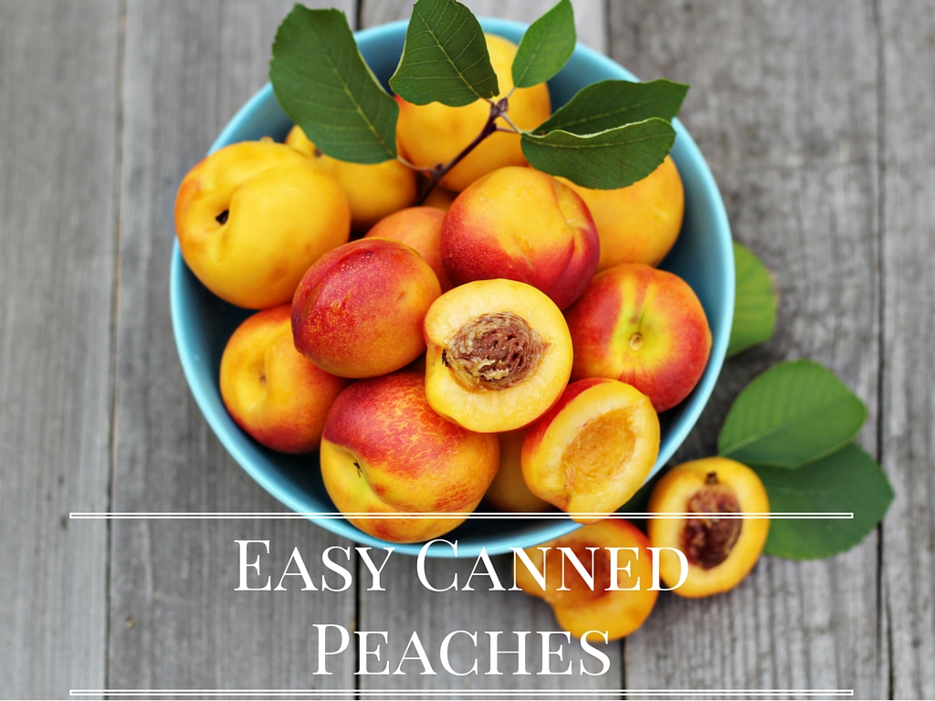 Easy Canned Peaches