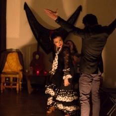 Flamenco-0026