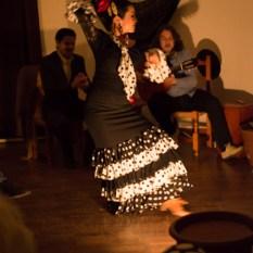 Flamenco-9930