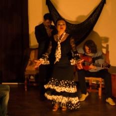 Flamenco-9949