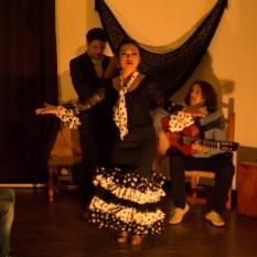 Flamenco-9951