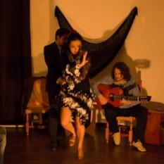 Flamenco-9970