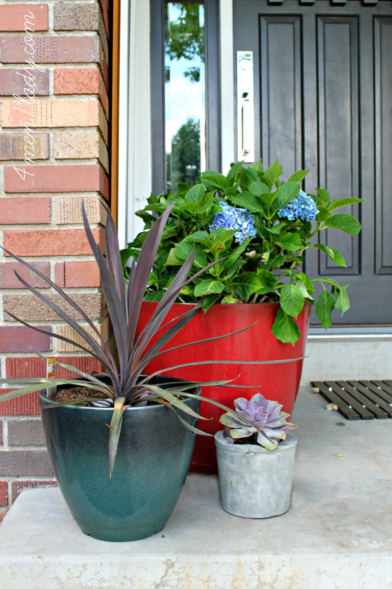 Large Of Home Depot Container Garden