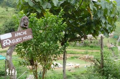 thai-apache-guesthouse (1) copie