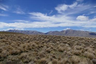 nouvelle-zelande-roadtrip-lac-tekapo-mount-cook (3)