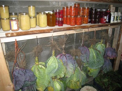 root-cellar-2-preppers101blog-400x300