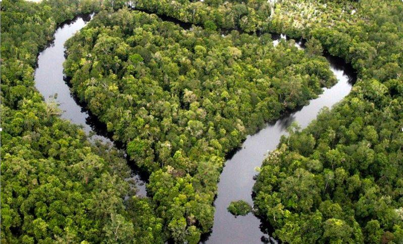 Περιβαλλοντική Ομάδα – Διεύθυνση Δασών ν. Πιερίας